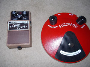 Fender Reverb and Dunlop Fuzzface