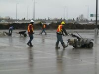 Parking Lot Sweeps / Spring Cleanup Services