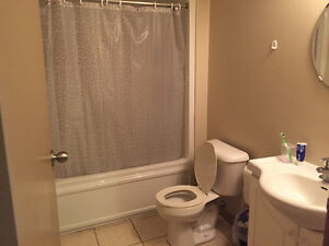 4 Month (May-Aug) Summer Sublet in All Female Unit 271 Lester Kitchener / Waterloo Kitchener Area image 4