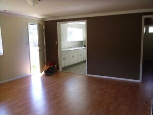 Bright and spacious 2 bedroom Basement Suite for rent