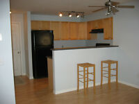 Beautiful 2Bed 2Bath Condo incl utilities and parking