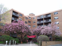 Mayland Heights 1 bdrm, cats ok, utilities incl, avail immed