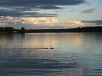 Stunning lake front lot at Cluculz Lake