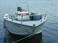 bateau de peche fish and ski 17.5'