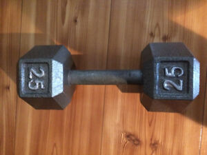 1 10LB Dumbell and 1 25LB Dumbell