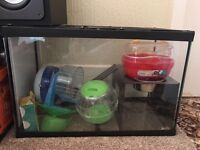Glass Hamster Cage, Toys & Bedding
