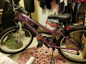 Brand new women bycycle