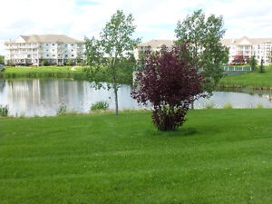 Move now,Beautiful Lake View Appartment near Millwood TownCentre