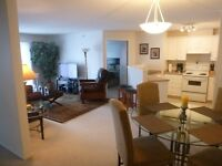 *2bed/2bath Furnished: Everything Included*Somerset