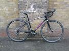 Specialized Dolce Sport 51cm Ladies Road Bike