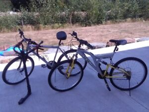 Two adult bikes and bike carrier.