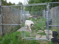 DOG RUN GATE PANEL & CHAIN LINK FENCING