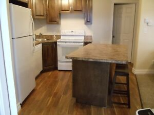 Executive one bedroom  in the heart of Corner Brook