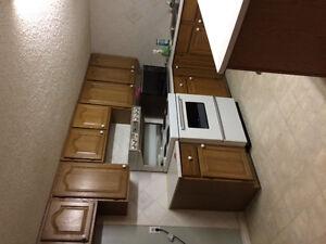 1 bedroom basement