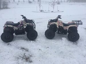 2 taotao 125cc kids quads, 3 years old $1600.00 for the pair.