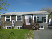 Spotless Starter Home in Mt. Pearl