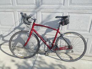 BRAND NEW: 2009 Women's Specialized Dolce Elite Road Bike