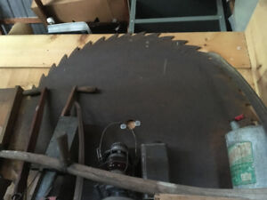 "Old antique 50"" saw blade, excellent condition,"