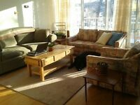 Furnished Big Bright South End Parking incl.