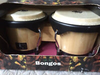 LP World Beat bongos