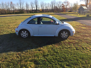 2000 Volkswagen Beetle Sedan Kawartha Lakes Peterborough Area image 3