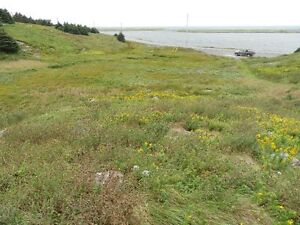 Land For Sale Point Verde Placentia Area St. John's Newfoundland image 1