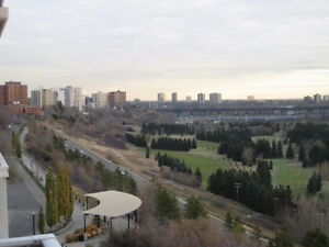 Phenomenal River Valley Views! Awesome downtown location - 1 BD