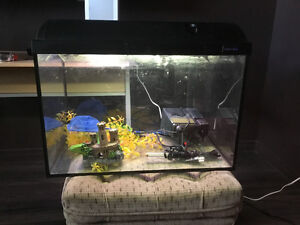 20 gallon Aquarium + all accessories