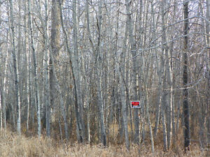 160 acres in Wandering river Owner will finance