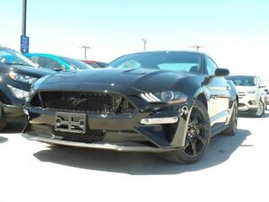 2018 Ford Mustang GT 5.0L V8 300A