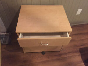2 drawer rolling office file storage