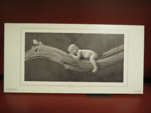 Anne Geddes Baby on tree framed on Wood