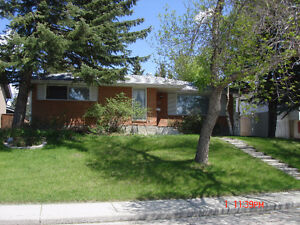 Northwest Dalhousie Single House bungalow for rent