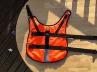 Dog Buoyancy Aid, life jacket