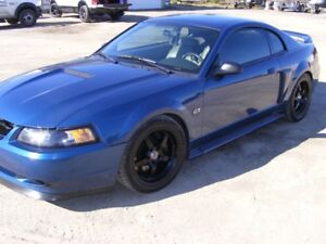 Mustang GT - Magazine Feature Car by Sean Hyland Motorsports