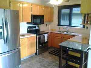 Room for rent in clean & quiet home