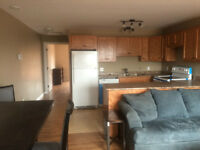 Brand New 1 Bedroom Senior's Apartment in Amherst, NS