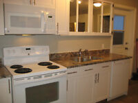 High River ALL INCLUSIVE 2 BEDROOM LOWER LEVEL UINT