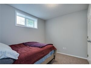 Cozy Basement Apartment for Rent in Milton