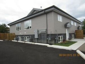 Luxury 3 Bedroom Available Immediately In Modern 4 Plex Building