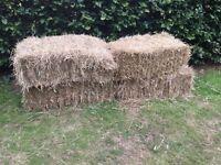Straw/hay bales