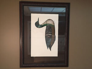 Duck / Loon Framed Limited Print