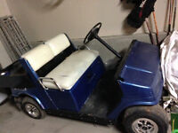 Golf cart with 11 tires and 8 rims