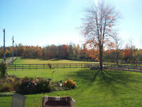 PRIVATE HORSE BOARDING AVAILABLE NEAR PORT ELGIN & AMHERST