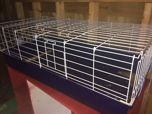 Perfect Condition Pet Cage NEED GONE