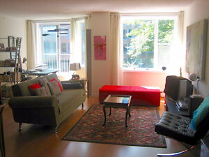 SUNNY, TASTEFULLY FURNISHED 1BR DOWNTOWN/WATERFRONT Sept.-Dec.