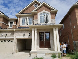 Brand New House For Rent in Brampton