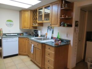 1 Bedroom Level Entry Suite BX Area