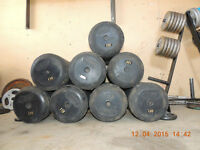 Troy Rubber Coated Dumbells