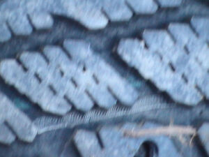 Wingard-studded winter tires-with rims